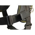 DT Fun - Patch Harness