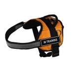 DT Works - Patch Dog Harness