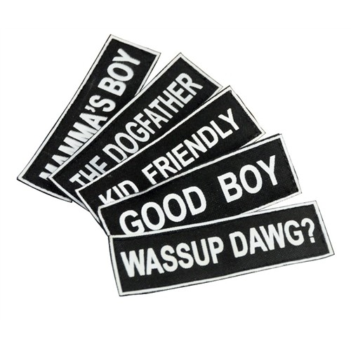 Pair of Fun Pet Patches