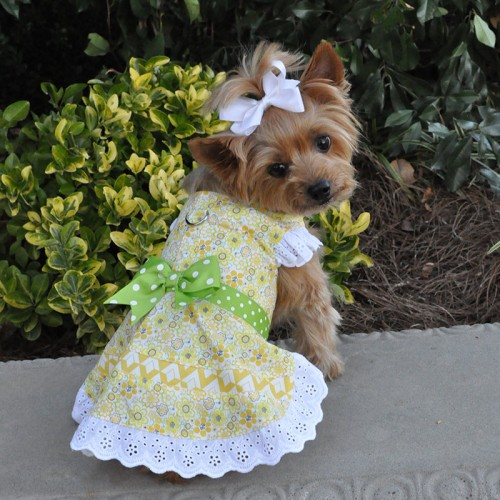 Emily Yellow Floral Lace Dress with matching leash and D-Ring