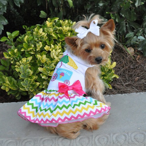 Ice Cream Cart Dress with Leash D-Ring