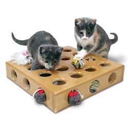 Peek-a-Prize Toy Box with 2 Toys