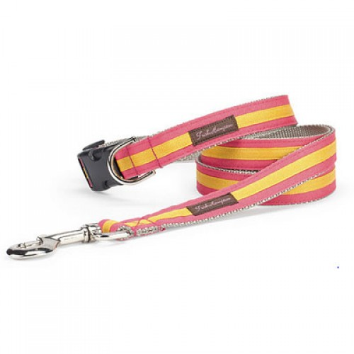 Coral Gold Stripe Collection
