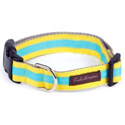 YellowithTurquoise Stripe Collection